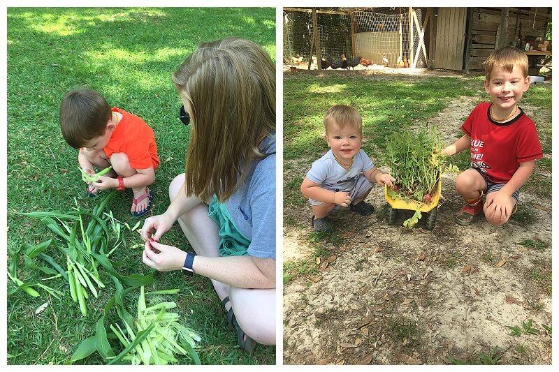 Gardening grows us