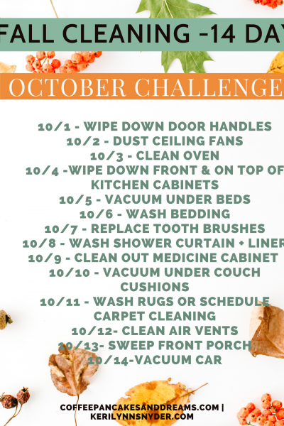 Fall Cleaning Challenge